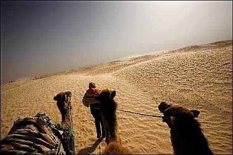 BLITT RIK: Fotografen kunne blitt rik hvis han hadde solgt journalisten for 50 kamler i Tunisia. Foto: Terje Bringedal