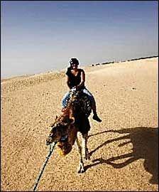KAMELTUR: Turister kan ri på kameler i Tunisia. Men når tunisiske menn tilbyr turistene å selge sine kvinner for et stort antall kameler, dreier det seg om seiglivet humor med utgangspunkt i gamle skikker der bruder ble kjøpt og betalt med kameler. Foto: Terje Bringedal
