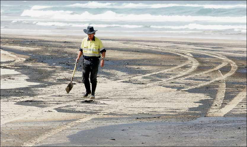 OLJERYDDING: Opprydningsarbeidet er i gang på Moreton Island etter at over 40 tonn olje lekket ut av tankskipet «Pasific Adventurer» utenfor kysten av Brisbane i Australia. Foto: AP