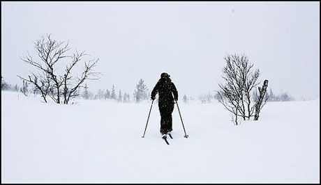 MODERAT SKREDFARE: Se opp for rasfare i skiløypene. Foto: Scanpix