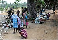 Tamiltigrene erklærer ensidig våpenhvile