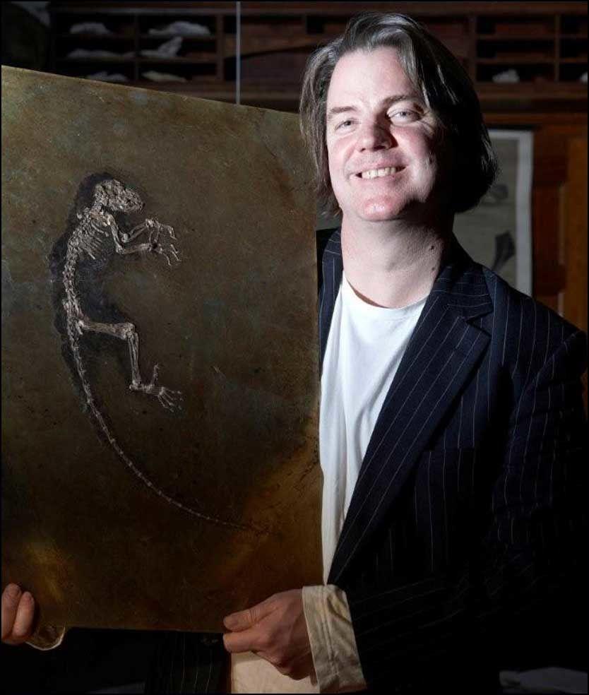 REVOLUSJON: Et internasjonalt forskerteam ledet av Jørn H. Hurum ved Naturhistorisk museum i Oslo har i dag annonsert beskrivelsen av det eldste komplette apeskjelettet i verden. Foto: Atlantic Productions