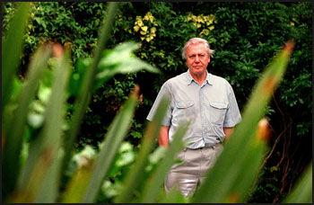 KJENDISSTØTTE: TV-personligheten David Attenborough karakerisrerer Ida som et gjennombrudd i utviklingshistorieforskningen. Foto: Morten Rakke