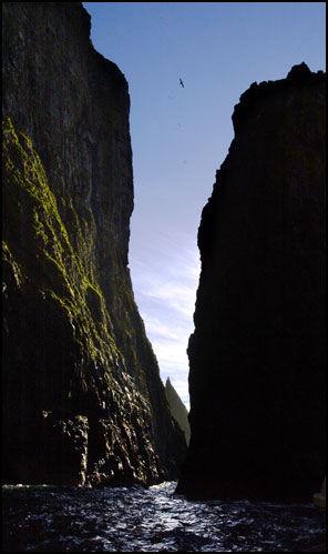 TROLSK: Bratte klippelandskap ved fuglefjellene nord for Vestmanna på Streymoy. Foto: Terje Gustafsen.