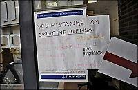 Dette bør du vite om svineinfluensaen