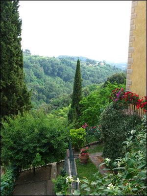 FRODIG: Toscana byr på grønt i alle nyanser. Foto: Bodil Fagerheim.