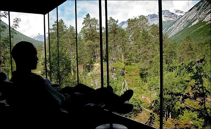 MIDT I NATUREN: Gjennom svære panoramavinduer kan hotellgjestene slappe av og bare nyte naturen - tett på som i en 5-stjerners «gapahuk». Foto: Dag Fonbæk