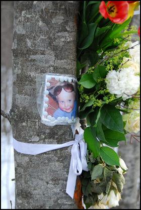 MINNET: Bilde av to år gamle Edvard og blomster på treet som stoppet familiebilen da den ble kastet av Riksvei 4 i dødsulykken. Foto: Håvard Solstad