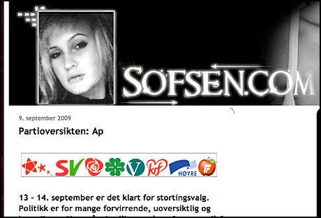 DREVEN: Det ligger mye arbeid bak bloggen til Sofie. Foto: Skjermbilde