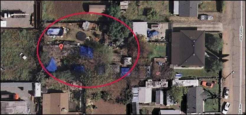 SKJULT: Bildene fra Google Maps viser den skjulte bakgården med flere bygninger og provisoriske telt. Foto: Google Maps
