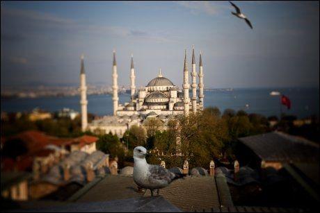 TYRKIA: Landet med Den blå moske blir stadig mer populært blant nordmenn. Foto: Terje Bringedal
