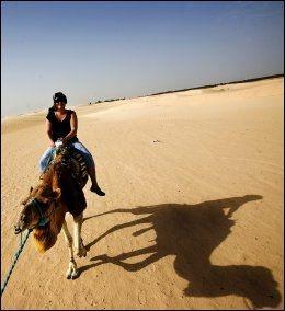 TUNISIA: Tunisia byr på både spennende opplevelser og behagelige strender. Foto: Terje Bringedal