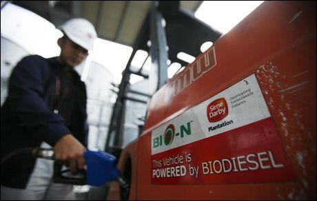 OMSTRIDT: Biodieselen vi har i dag er ikke bra nok for bruk i biler, mener forsker. Foto: Reuters