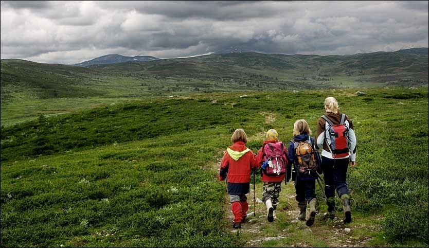 EGNET FOR BARN: Huldreheimen er et bra sted å ta med barn på fjelltur. Foto: Espen S. Hoen