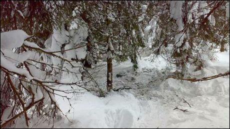 FUNNSTEDET: Her ble Faiza Ashraf funnet drept sent i går kveld. Stedet bærer preg at det er blitt gravd i snøen og bakken. Det var den siktede 25-åringen som pekte ut stedet etter å ha tilstått drapet. Foto: Espen Sjølingstad Hoen