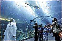 Dubai-akvarium sprakk - kjøpesenter evakuert