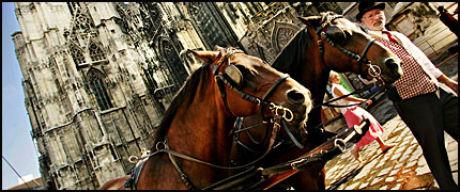 TYPISK WIEN: Hestedrosje foran Stephans-katedralen - det er Wien, det. Foto: Marie Sjøvold Foto: Marie Sjøvold