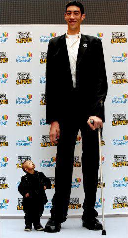 Verdens høyeste mann