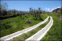 LANDEVEI: Slik ser veiene ut på landsbygda i Toscana. Foto: KARIN BEATE NØSTERUD.