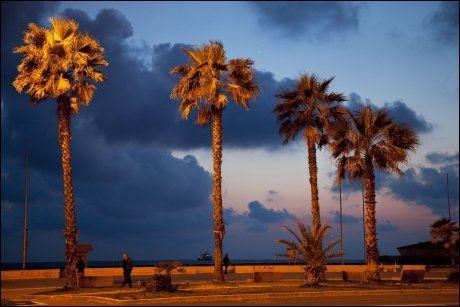 VIAREGGIO: Kveldsstemning på strandpromenaden i badebyen Viareggio, på Toscanas riviera. Foto: KARIN BEATE NØSTERUD / VG
