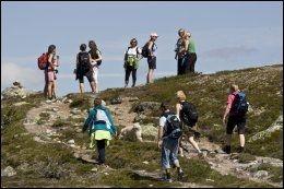 FOTTUR PÅ VIDDA: Hardangervidda har mye å by på i sommer. DNT har flere pakketurer man man melde seg på. Foto: DNT.