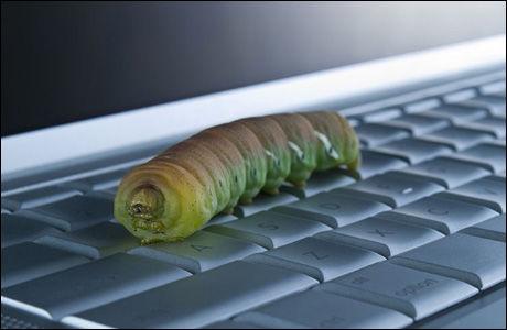 ORM: Here you have- ormen sprer seg via kontaklister i Outlook. (Foto: Istock)