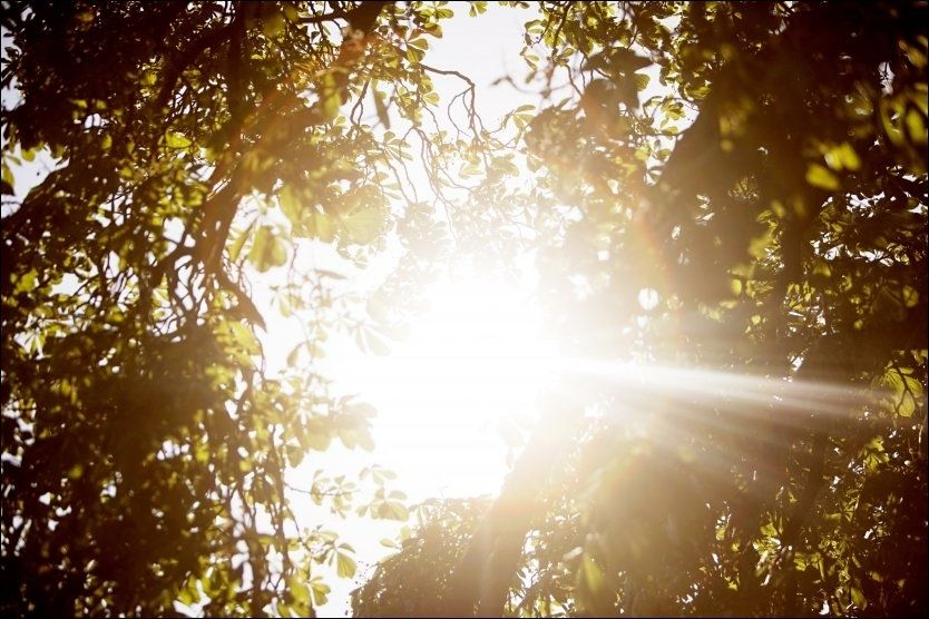 NESTEN 20: Meteorologene holdt hva de lovet, og på værmeldingen var det sol fra sør til langt mot nord mandag. Og det er enda ikke slutt. Foto: Scanpix