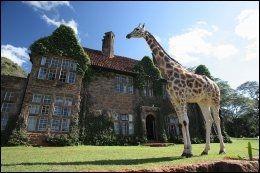 SJIRAFF-SLOTT: The Giraffe Manor er navnet på dette stedet, som ligger utenfor Nairobi i Kenya. Et lite og eksklusivt hotell, hvor du kan mate sjiraffene mens du spiser frokost. Pris per natt er 3000 kroner. Foto: AIRBNB.