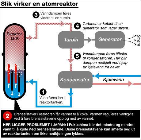 ATOMREAKTOR: Slik fungerer atomreaktoren i Fukushima i Japan. Grafikk: Tom Byermoen