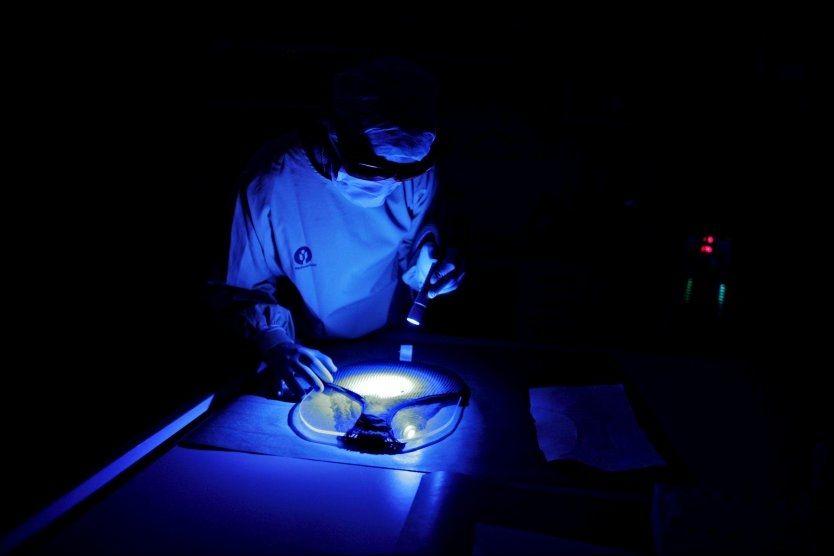 DNA-TESTING: Rettsmedisinsk institutt er Norges største eksperter på DNA-analyse. Her søker man i laboratoriet etter en sædflekk på en truse for å finne DNA-spor. En bitteliten sædflekk er nok til å avsløre en voldtektsmann. Foto: Stein J Børge, Aftenposten/Scanpix