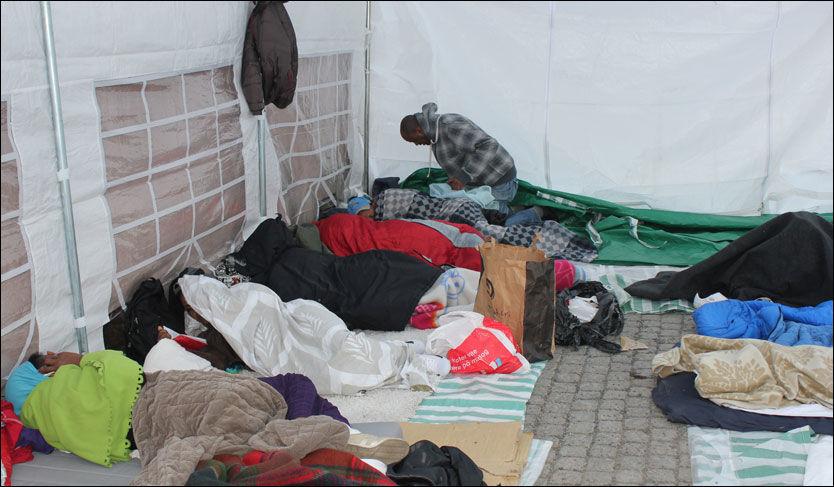 I TELT: Her har flere av etioperne som i går ble kastet ut av transittmottak tilbrakt natten. Foto: Jostein Matre