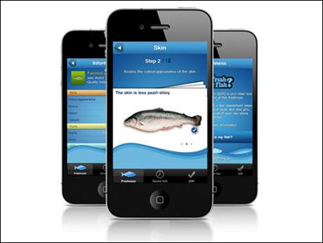 FISK TIL MIDDAG? Nå kan du sjekke hvor fersk den er ved hjelp av mobilen. Foto: NOFIMA
