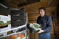 - Vi skal ikke levere agurker fra Spania nå