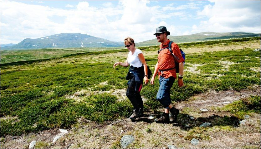 NORGESVENNER: Herry Moes (t.h.) og Marjan Krommendyk har reist «overalt» i Norge, fra Lindesnes til Nordkapp. Paret elsker det vide utsynet, som her på Dovre. Foto: GJERMUND GLESNES / VG