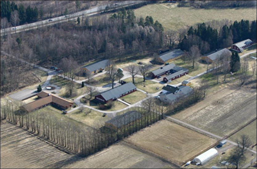 SONET - MED NETT: Her i Berg fengsel i Vestfold sonet den overgrepsdømte 32-åringen fra Sunnmøre. Overgrepsofrene møtte han på nettet, likevel fikk mannen internettilgang i fengselet. Foto: Tom A. Paulsen/Wikimedia Commons