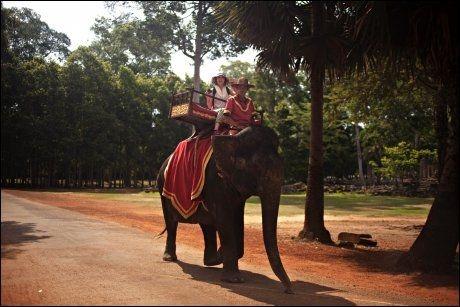 ELEFANTTUR: Angkor-området er enormt. Lei en tuktuk, sykkel eller elefant for å komme deg rundt. Foto: MARTE VIKE ARNESEN/VG