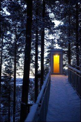 MYSTISK: I skumringstimen får trekoiene et rent mystisk drag over seg. Man lokkes mot lyset... Foto: GØRAN BOHLIN / VG
