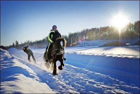 FULL FRES: Om du trenger litt fart og spenning etter all avslapningen i trekoia, kan du for eksempel stå på miniski - bak en hest! Foto: GØRAN BOHLIN / VG