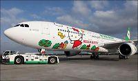 Verdens søteste fly?