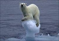 Flere klimaskeptikere i Norge