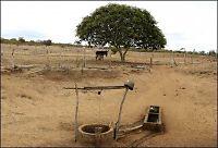 WWF: - Vi trenger en ny jordklode