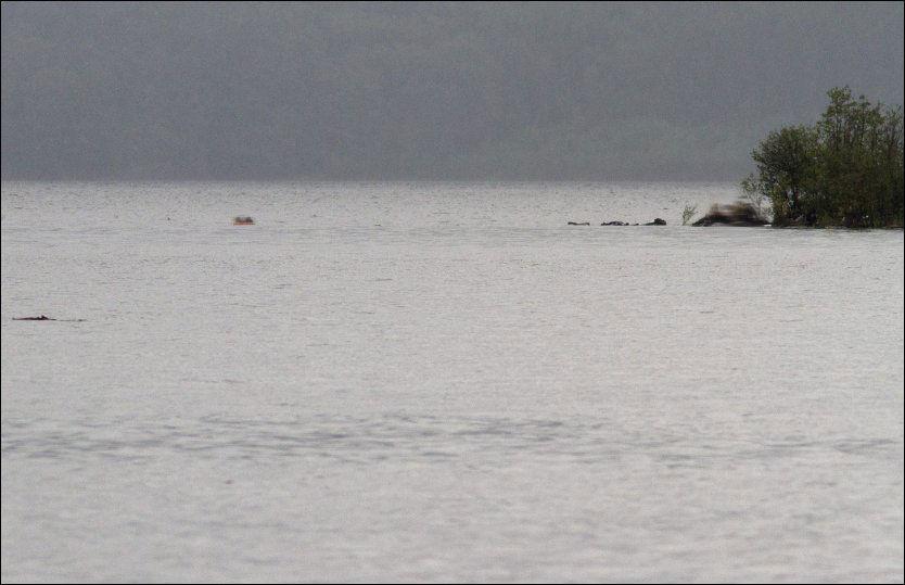 KONFRONTERTE BREIVIK: Den 18 år gamle jenta så Breivik rett i øynene. Hun gjemte seg her på Sydspissen av øya. Foto: Jan Bjerkeli