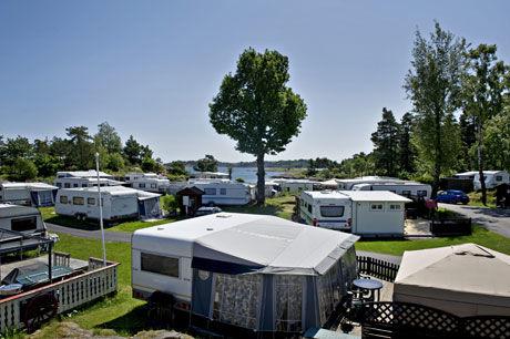 FEMSTJERNERS: Moysand camping er en av landets to femstjerners campingplasser. - Det er som å drive en liten by, sier eier Ragnvald Stensvand. Foto: Eivind Griffith Brænde