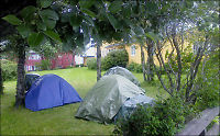 Romfolk i Bodø reiser hjem til Romania