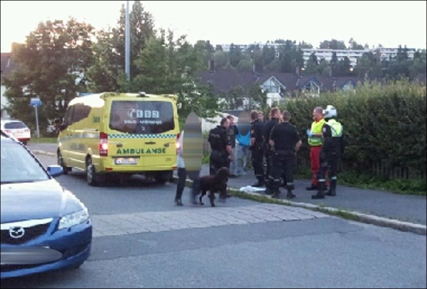 SKUTT I ET BOLIGOMRÅDE: Politiet har pågrepet en mann etter skytingen i dette boligområdet på Ellingsrud i Oslo. Politi og ambulanse rykket ut da de fikk melding om skytingen mandag kveld. FOTO: 2200-TIPSER