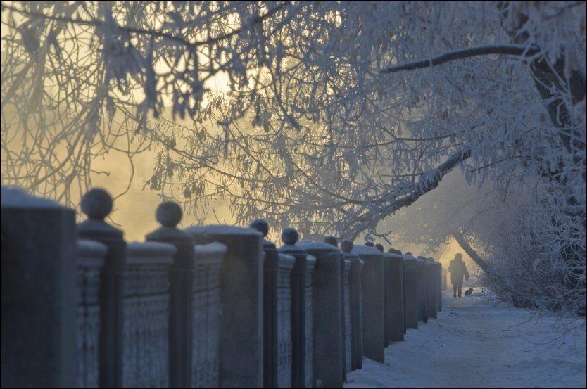 ISKALDT: En kvinne lufter hunden sin i Moskva i over 20 kuldegrader julaften. Foto: Reuters