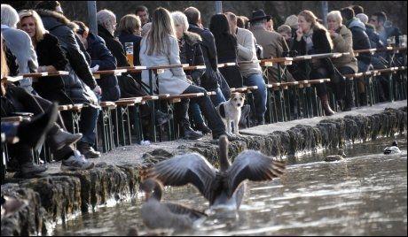 VARMT: Folk og dyr nøt livet utendørs i München julaften. Foto: AFP