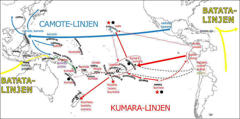 POTETKARTET: Kartet viser de tre spredningslinjene for søtpotet: Kumara-linjen, ca. år 1100, Camote-linjen (spanske skip) og Batata-linjen (portugisiske skip) på begynnelsen av 1500-tallet. Foto: Grafikk: Caroline Roullier/PNAS
