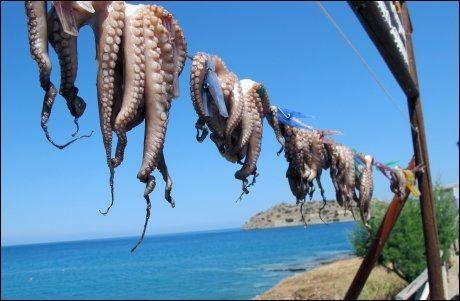 PÅ TOPP: Kreta holder stand som nordmenns favorittreisemål innen kategorien sol og bad - side om side med tyrkisiek Alanya. Foto: Mona Langset