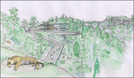 NORDISK: Skisser over parken. Den sibirske tigeren tåler det norske klimaet. Tegning: Jon Thorstensen/B16
